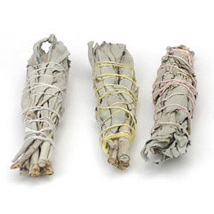 White Sage Baby Smudges by Starwest Botanicals